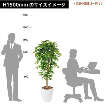 green-size-h1500