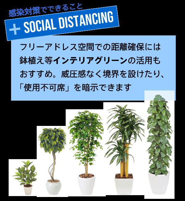 インテリアグリーンで社会的距離確保