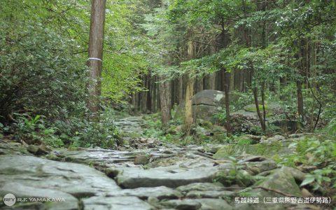 馬越峠の石畳背景