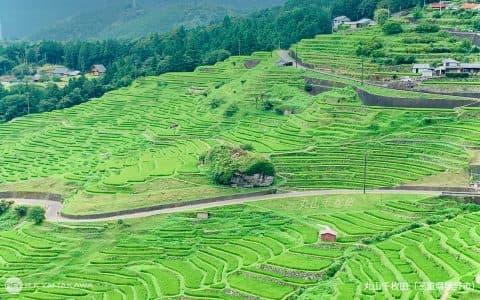 大切にしたい日本の原風景。三重県熊野市の「丸山千枚田」背景その③